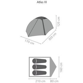 SALEWA Atlas III Tente, cactus/grey